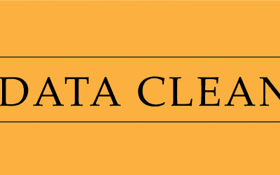 AI & Data Cleansing